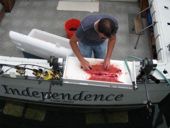 fishcleaning.jpg