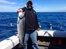 16lb king salmon