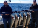 Lake trout limit