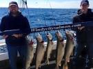 Lake trout limit